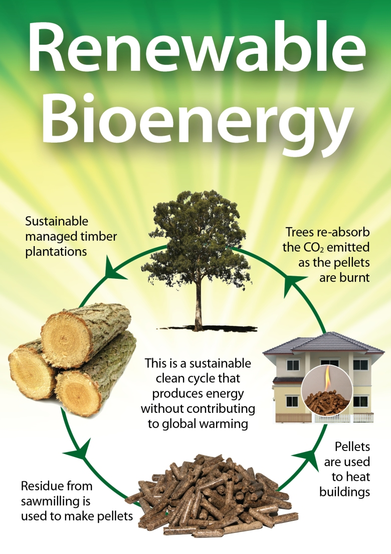 renewable bioenergy carbon cycle